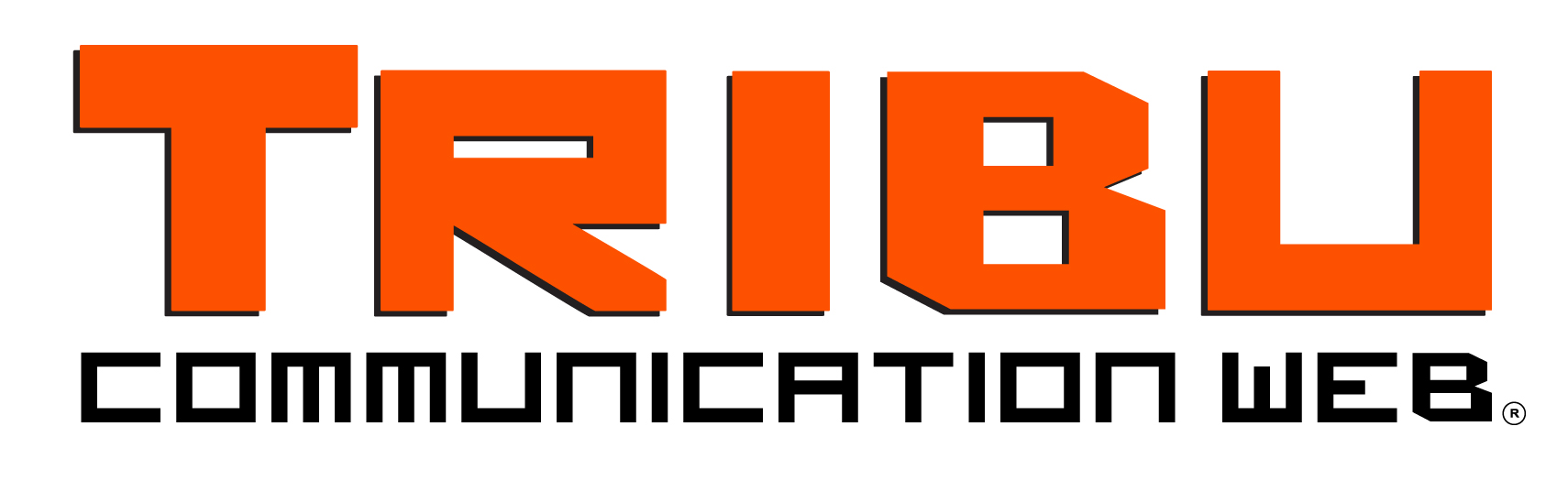 Tribu Communication Web